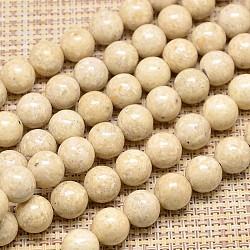 "Perles rondes fossiles naturel brins, 16mm, trou: 2mm; environ 27 pcs/chapelet, 15.7""(G-I108-16mm)"