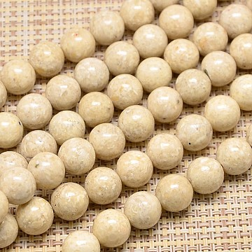 16mm Wheat Round Fossil Beads