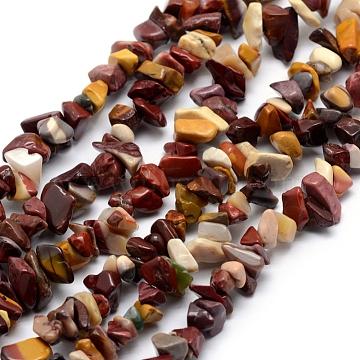 Chapelets de perles en mookaite naturelles, puce, 5~8mm, Trou: 1mm; Environ 33'' (84cm)(G-P332-38)