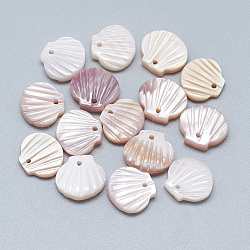 charmes de coquillages blancs, coquille, 9.5x10x3 mm, trou: 1 mm(X-SSHEL-S260-097C)