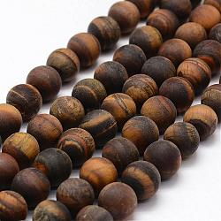 Frosted Natural Tiger Eye Beads Strands, Round, 12mm, Hole: 1.8mm; about 32pcs/strand, 15.5inches