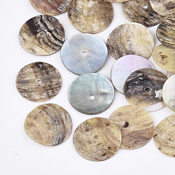Natural Akoya Shell Beads, Mother of Pearl Shell Beads, Flat Round, Tan, 15~15.5x1~2mm, Hole: 1.4mm(SHEL-T012-44)