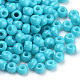 Baking Paint Glass Seed Beads(SEED-Q025-3mm-L09)-2