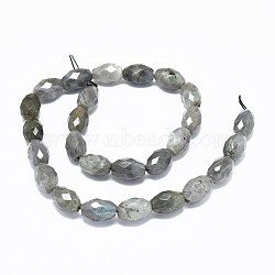 Natural Labradorite Beads Strands, Faceted, Oval, 15.5~16x10~10.5mm, Hole: 1mm; about 25pcs/strand, 15.7~15.8''(40~40.2cm)