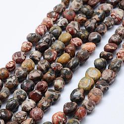 perles de jaspe en peau de léopard naturel, nuggets, 6~13x6~8 mm, trou: 1 mm; 15.3 15.7 cm)(G-K203-34)