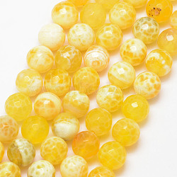 Natural Fire Agate Bead Strands, Round, Grade A, Faceted, Dyed & Heated, Yellow, 10mm, Hole: 1mm; about 37pcs/strand, 15inches