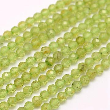 2mm LightGreen Round Peridot Beads