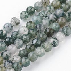 Chapelets de perles en agate mousse naturelle, rond, 4~4.5mm, trou: 1mm; environ 85~90 pcs/chapelet, 14.9'' (38 cm)(G-G735-62-4mm)