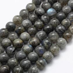Natural Labradorite Beads Strands, Grade A+, Round, 10mm, Hole: 1mm; about 39pcs/strand, 15.3''(39cm)