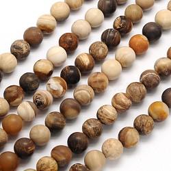 """Dépoli rondes naturelles pétrifiés perles de bois brins, 6mm, trou: 1mm; environ 65 pcs/chapelet, 15.3""""(G-N0166-71-6mm)"""