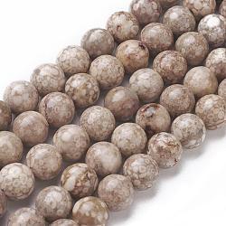Chapelets de perles en pierre de chrysanthème naturel, rond, 8~8.5mm, trou: 1mm; environ 47 pcs/chapelet, 14.9'' (38 cm)(G-F563-02-8mm)