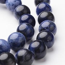 """Brins ronds de perles de sodalite naturelle, 10mm, trou: 1mm; environ 38~39 pcs/chapelet, 15""""(G-J346-24-10mm)"""