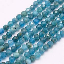 """Chapelets de perles en apatite naturelle, AA grade, facette, rond, 3mm, trou: 0.5mm; environ 132 pcs/chapelet, 15.7"""" (40 cm)(G-F509-17-3mm)"""