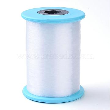 Fishing Thread Nylon Wire, White, 0.25mm, about 2734.03 yards(2500m)/roll(NWIR-R038-0.25mm-02)