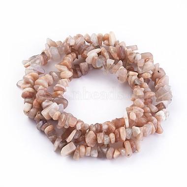 Grade A Chip Natural Sunstone Chip Bead Strands(G-M343-01)-2