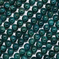"""Chapelets de perles en apatite naturelle, rond, sarcelle, 8mm, trou: 1mm; environ 50 pcs/chapelet, 15.7""""(G-A163-01-8mm)"""