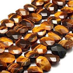 naturelles oeil de tigre brins de perles, facettes, rectangle, 10~12x13~16x5~8 mm, trou: 1 mm; environ 33~38 perle / brin, 15.3~15.7 (39~40 cm)(G-F479-06)