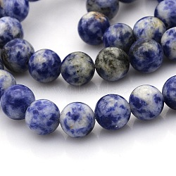 натуральные синие пятна яшмы круглых нитей из бисера, 8 mm, отверстия: 1 mm; о 50 шт / прядь, 15.7(G-N0120-48-8mm)