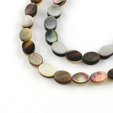 8mm Oval Black Lip Shell Beads