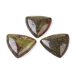 Dragons naturel pendentifs en pierre de sang, triangle, 42x40x8~9mm, Trou: 1mm(G-G769-02)