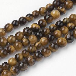 Jaunes brins naturels de perles oeil de tigre, rond, grade AB +, 4~4.5mm, trou: 1mm; environ 85~90 pcs/chapelet, 14.9'' (38 cm)(G-G735-65-4mm-AB+)