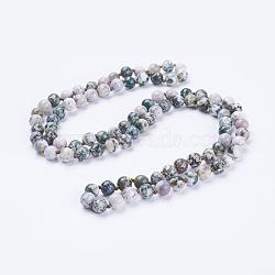 Естественно агат бисера ожерелья, круглые, 60'' (152.4 см)(NJEW-P202-60-A38)