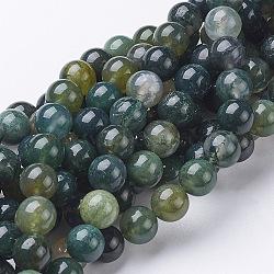 """Chapelets de perles en agate mousse naturelle, rond, environ 8 mm de diamètre, Trou: 1mm, Environ 51 pcs/chapelet, 15~16""""(X-GSR001)"""