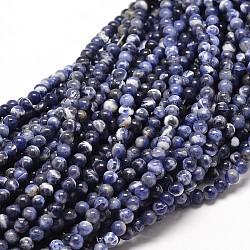 """Chapelets de perle ronde en sodalite naturelle, 4mm, trou: 1mm; environ 98 pcs/chapelet, 16""""(X-G-P072-27-4mm)"""