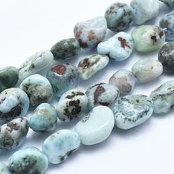 "Larimar naturel brins de perles, nuggets, 5~8mm, trou: 0.8mm; environ 45~47 pcs/chapelet, 15.7"" (40 cm)(G-E483-47)"