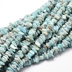 """Chapelet de perles de copeaux de larimar naturelles, 5~14x4~10mm, trou: 1 mm; environ 15""""(G-E271-77)"""