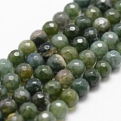 """Chapelets de perles en agate mousse naturelle, facette, rond, darkolivegreen, 6mm, trou: 1mm; environ 61 pcs/chapelet, 14.9""""~15.1""""(G-G736-16-6mm)"""