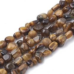naturelles oeil de tigre brins de perles, nuggets, 2~19x3~8x2~7 mm, trou: 1 mm; environ 50~55 perle / brin, 15.55(G-S339-06)