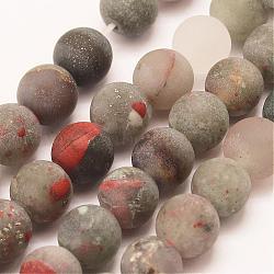 African brins bloodstone de perles naturelles, rond, mat, 6mm, trou: 1mm; environ 62 pcs/chapelet, 15''(G-P295-05-6mm)