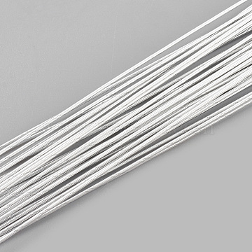 0.6mm WhiteSmoke Iron Wire