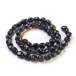 naturelles oeil de tigre brins de perles, nuggets, 6~13x5~10x4~7 mm, trou: 0.8 mm; environ 52 perle / brin, 16.1 (41 cm)(G-F575-18H)