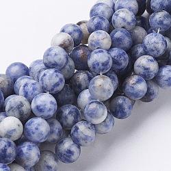 Gemstone Beads, Natural Blue Spot Jasper, Round, CornflowerBlue, 8mm, Hole: 1mm; about 46~48pcs/strand, 16inches(X-GSR036)