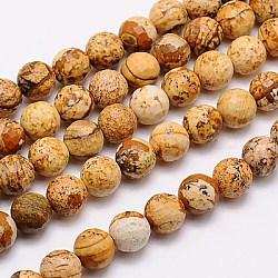 """Chapelets de perles en jaspe avec images naturelles, facette, rond, 6mm, trou: 1mm; environ 60 pcs/chapelet, 15.55""""(G-G542-6mm-08)"""