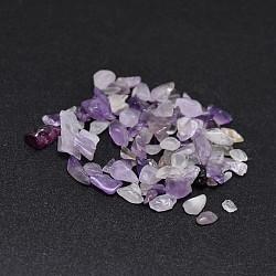 Perles de puces améthyste naturelle, pas de trous / non percés, 2~8x2~4 mm; environ 170 pcs / 10 g(X-G-O103-10)