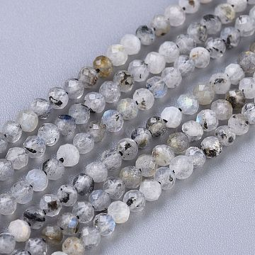 Natural Labradorite Beads Strands, Round, Faceted, 3mm, Hole: 0.6mm; about 119~140pcs/Strand, 15.35~15.75 inches(39~40cm)(G-R475-025B)