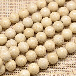"Perles rondes fossiles naturel brins, 10mm, trou: 1mm; environ 39 pcs/chapelet, 15.7""(G-I108-10mm)"