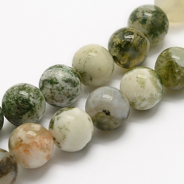 Natural Tree Agate Beads Strands, Round, 8mm, Hole: 1mm; about 46pcs/strand, 14.5 inches(37cm)(G-G735-02-8mm)