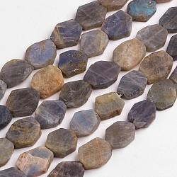 """Chapelets de perles en labradorite naturelle , mat, pépites plates, 12~26x11~22x4~8.5mm, trou: 1mm; environ 19~20 pcs/chapelet, 15.5""""~15.9""""(G-D836-A05)"""