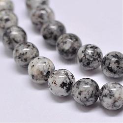 jaspe de sésame naturel / perles de jaspe kiwi, arrondir, gris, 8 mm, trou: 1 mm; environ 47 perle / brin, 15.5(G-F351-8mm)
