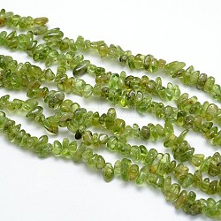 péridot naturelles brins de perles, puces, 3~5x3~5 mm, trou: 1 mm; sur 31.5(X-G-O049-A-07)