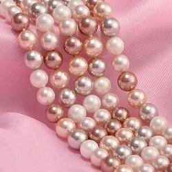 """Chapelets de perles de coquille, polie, rond, couleur mixte, 6mm, Environ 64 pcs/chapelet, 15.9""""(BSHE-Q001-1)"""