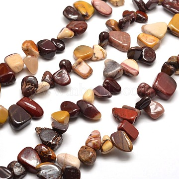 Natural Mookaite Chip Bead Strands, 8~22x7~16x4~8mm, Hole: 1mm; about 16inches(G-M204-50)