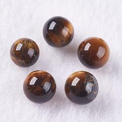 Perles d'œil de tigre naturel, la moitié foré, rond, 8mm, Trou: 1.2mm(G-K275-17-8mm)