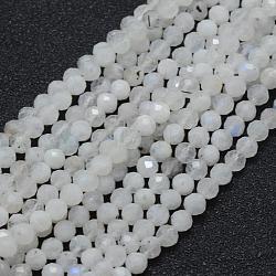 """Chapelets de perles en pierre de lune naturelle, rond, facette, 4mm, trou: 0.7mm; environ 94 pcs/chapelet, 15.35"""" (39 cm)(G-E411-08-4mm)"""