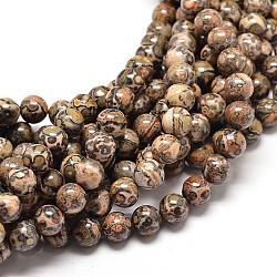 """Brins de perles rondes en jaspe en peau de léopard naturel, 10mm, trou: 1mm; environ 40 pcs/chapelet, 16""""(G-P072-45-10mm)"""