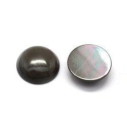 Cabochons de coquille naturelle, demi-rond, teint, noir, 11x3mm(BSHE-E566-01-11mm)